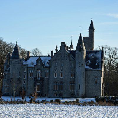 Het kasteel Marnix de Sainte-Aldegonde, ook wel kasteel van Bornem genoemd, is gelegen in Bornem in de provincie Antwerpen in België. Het kasteel ligt aan de Oude Schelde, een zijarm van de Schelde die in de 13e eeuw is afgesneden van de rivier. Het staat op de oude fundamenten uit de 10e of 11e eeuw van een burcht, die bescherming moest bieden tegen de invallen van de Noormannen.