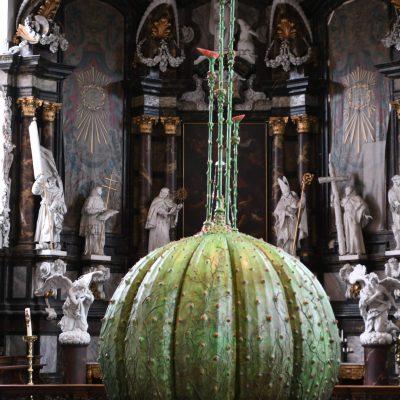Collegekerk - reuze aardbei Coup de Ville 2020 (Chasing Flowers)