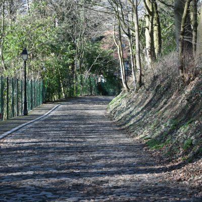 De Muur van Geraardsbergen is een helling en straat op de Oudenberg in de Belgische stad Geraardsbergen. De Muur, ook bekend als de Muur-Kapelmuur, was een begrip als voorlaatste helling in de wielerwedstrijd de Ronde van Vlaanderen van 1973 tot 2011. De Muur is een kasseiweg op de Oudenberg, de heuvel waartegen het stadscentrum van Geraardsbergen aan ligt. In 1940 werd de Oudenberg beschermd als landschap en in 1995 werd de befaamde kasseiweg uitgeroepen tot monument. De tand des tijds knabbelde aan de beroemde helling en renovatie werd steeds noodzakelijker. In maart 2004 heeft Vlaams minister van Binnenlandse Aangelegenheden Paul Van Grembergen (Spirit) de Muur officieel heropend. Ook premier Guy Verhofstadt (VLD) en Kamervoorzitter Herman De Croo (VLD) waren hierbij aanwezig. De totale kosten van de werken werden begroot op 1.256.494 euro.Medio 18de eeuw werd gestart met de bouw van het kasteel op de top van de Oudeberg, dat omstreeks 1810 werd voltooid.