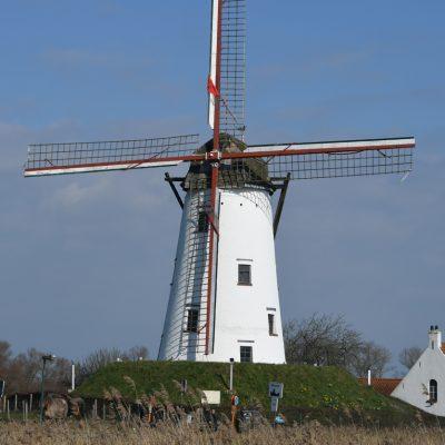 De Schellemolen is een stenen windmolen in het Belgische Damme. De witgeschilderde bergmolen dateert uit 1867 en verving een eerdere standerdmolen. Sinds 1479 staat op deze plaats langs de Damse Vaart een molen. De molen is uitgerust met twee steenkoppels en een olieslagerij in de kelder. In 1963 stopte het maalbedrijf, waarna de Schellemolen in verval raakte. In 1971 kocht de provincie West-Vlaanderen de molen, waarna herstel volgde. In 1977 was hij weer maalvaardig. De molen is van 1 april t/m 20 september elk weekeinde te bezoeken.